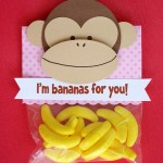 massvalentines_monkey_product_main