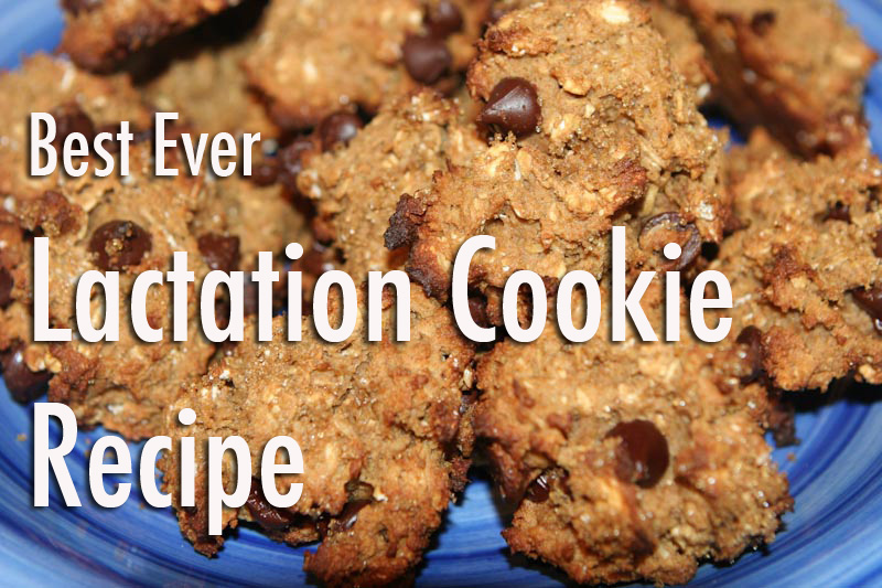 lactationcookies