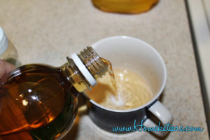 How to Get Ride of Fruit Flies Overnight ~ Homeketeers