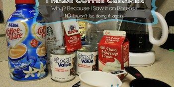 Make Your Own Coffee Creamer – Not Worth It