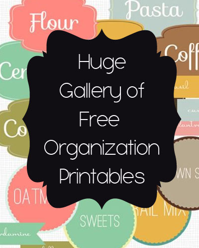 Organization Challenge Day 10