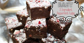 Easy 3 Ingredient Microwave Peppermint Fudge #recipe #christmas #dessert