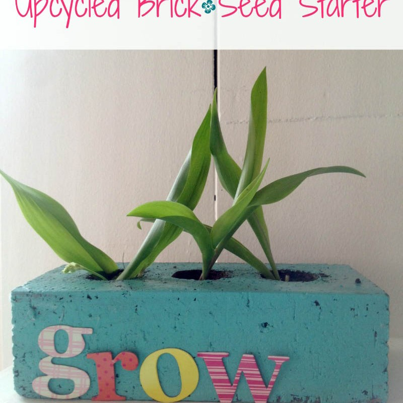 Adorable Upcycled Brick Seed Starter